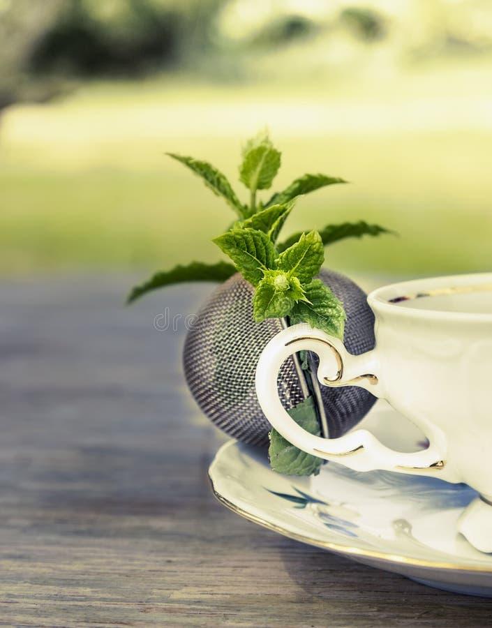 滤茶器用薄荷的草本和杯子发球区域 免版税库存图片