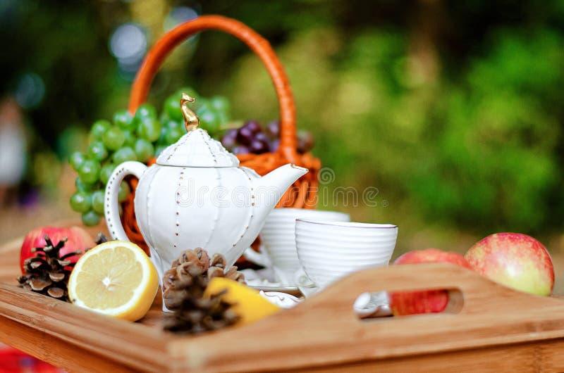 茶固定的静物画 库存图片