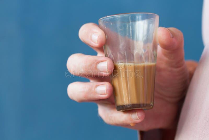 茶在手中 库存图片