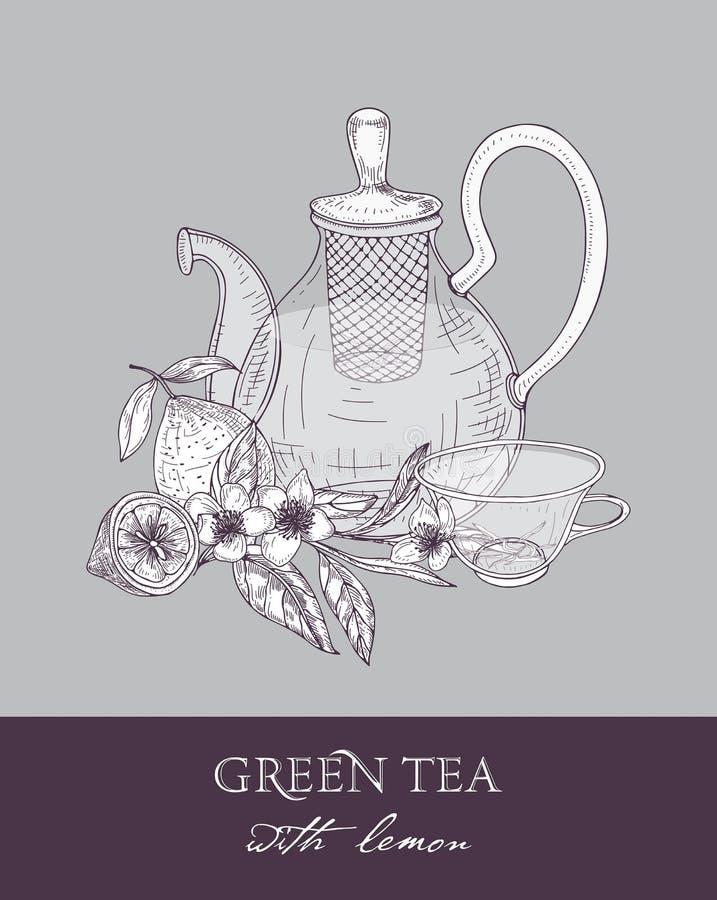 茶壶单色剪影有过滤器的,杯子、绿色茶叶、花和水多的柠檬在灰色背景结果实 库存例证