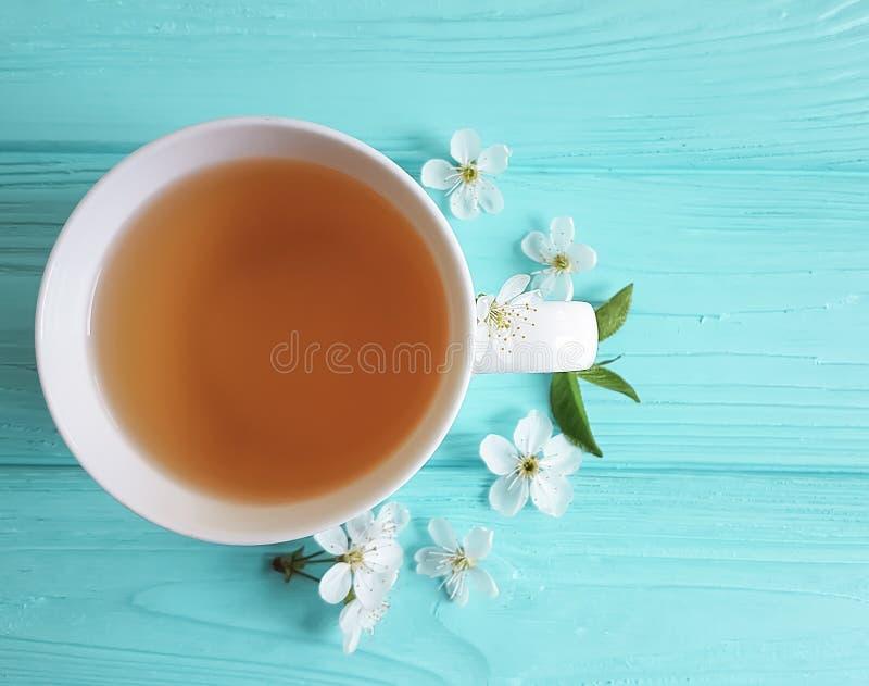 茶开花的樱桃,芳香开花的自然葡萄酒构成杏子蓝色木背景 免版税图库摄影