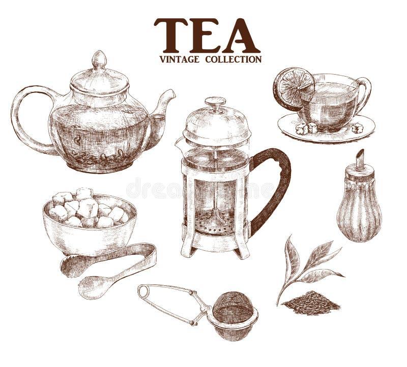 茶手拉的集合 库存例证