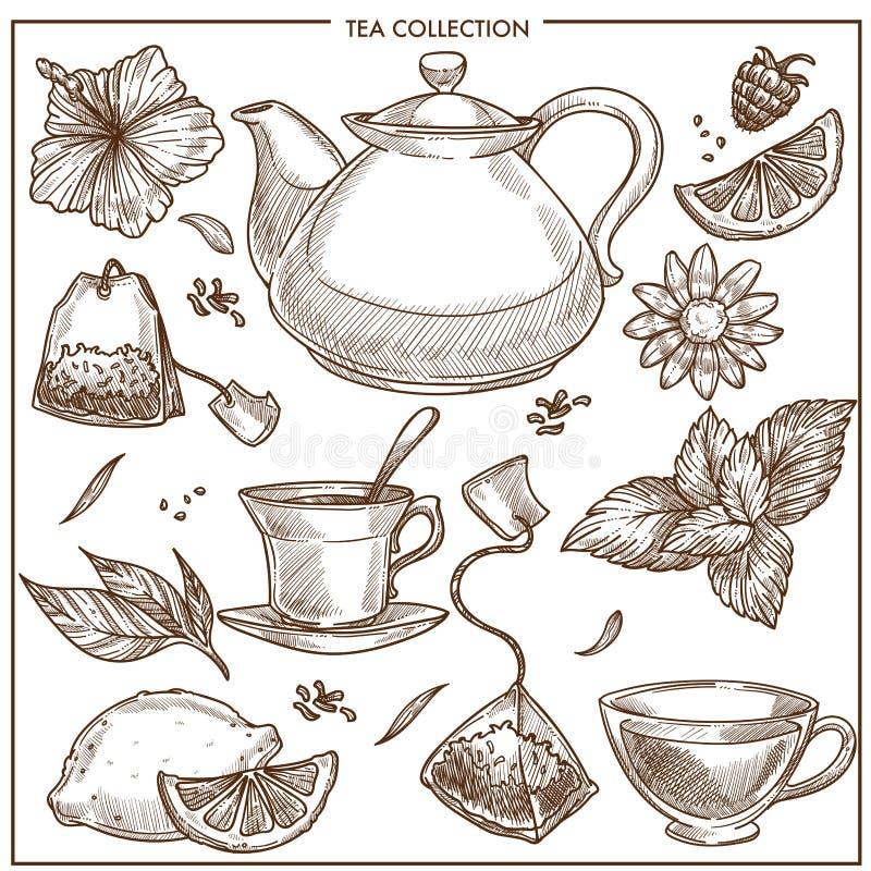 茶汇集传染媒介杯子剪影象、茶壶和茶袋或者草本调味料 皇族释放例证