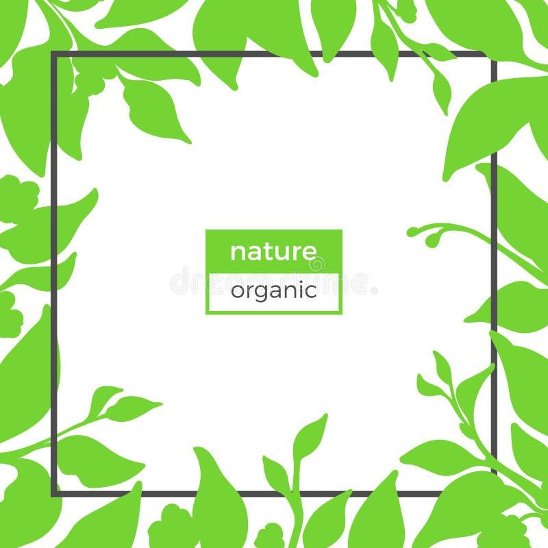 茶灌木自然分支  向量 库存例证
