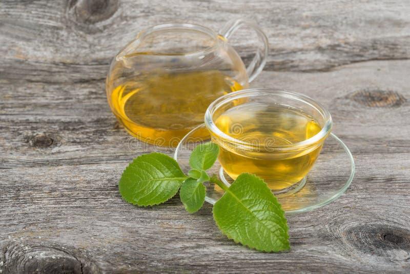 绿茶用在杯子和罐的薄菏 免版税图库摄影