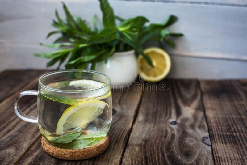茶用新鲜薄荷和柠檬 免版税库存照片