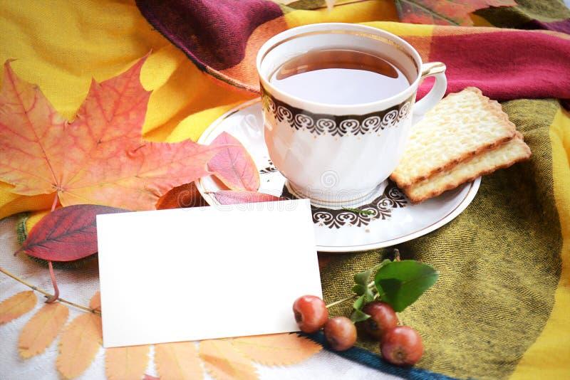 茶用秋叶曲奇饼和空插件 免版税库存照片