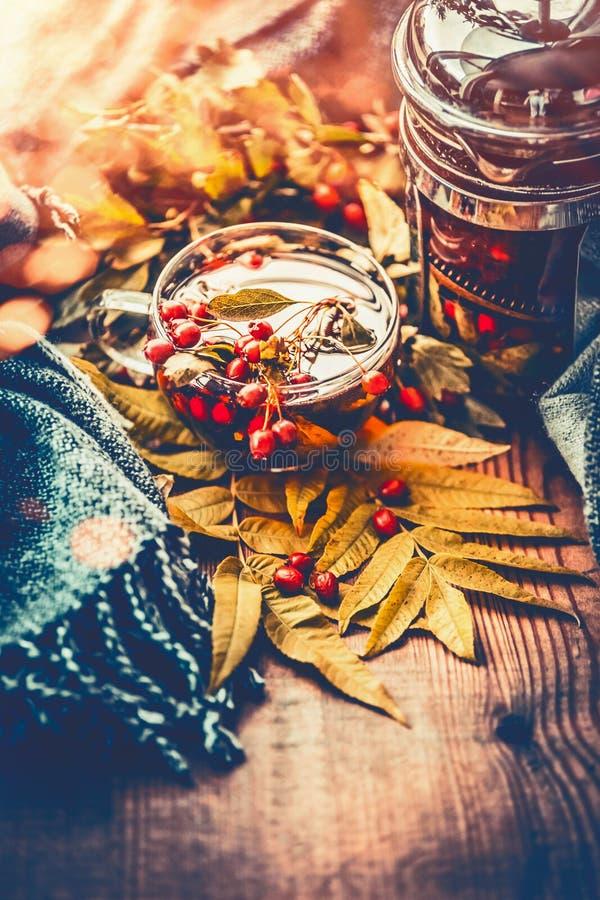茶用秋天莓果、叶子和围巾 免版税库存照片