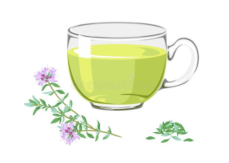 茶用药用植物麝香草和分支有花的 皇族释放例证