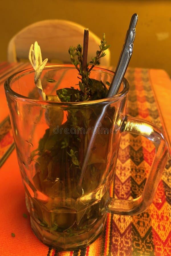 茶的特别混合用薄菏、古柯叶子、tola和chachacoma与的高处交战在秘鲁 免版税库存图片