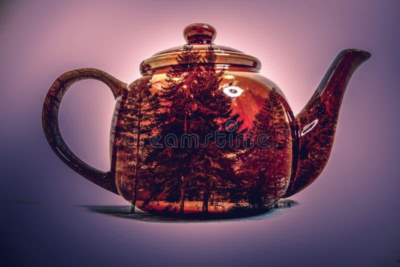 茶罐两次曝光  库存图片
