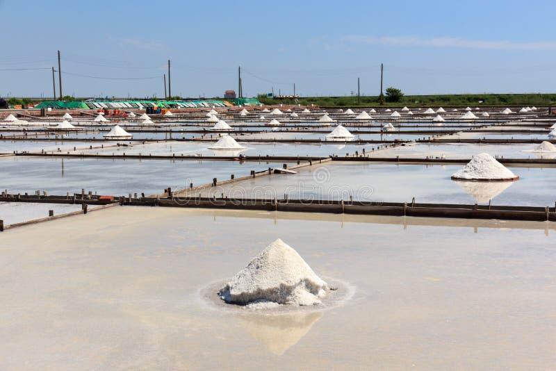 荆山Zai焦在台南瓦片铺了盐领域 库存图片