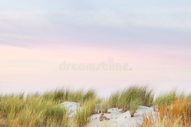 草、沙子和五颜六色的被绘的天空,安静和仍然 免版税库存图片