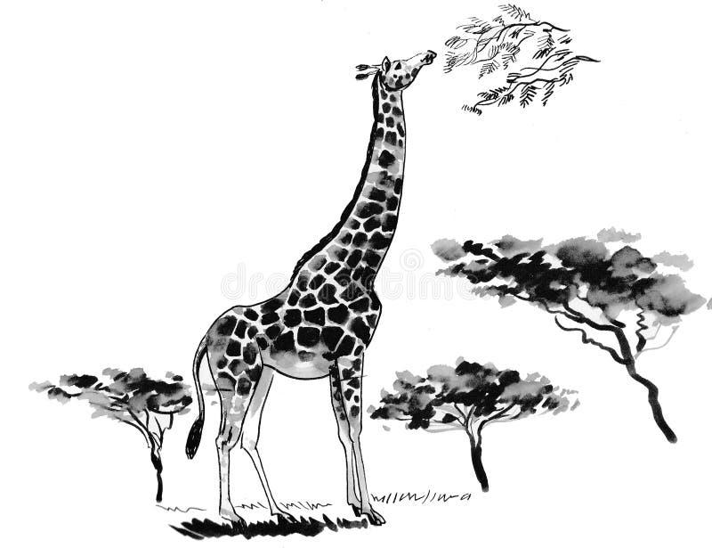 草原上的长颈鹿 库存例证