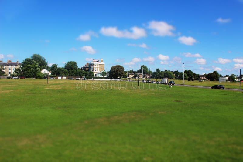 草原在伦敦 图库摄影