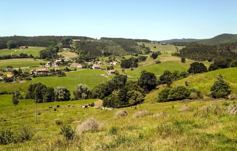 草原在坎塔布里亚 免版税库存照片