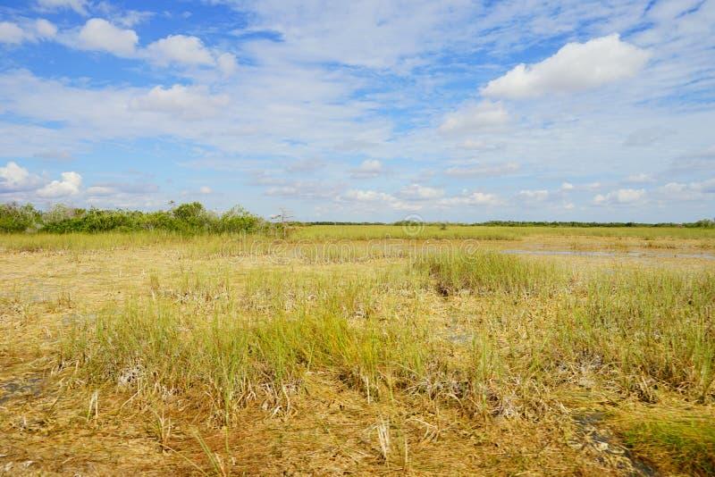 草原在沼泽地国立公园 免版税库存图片