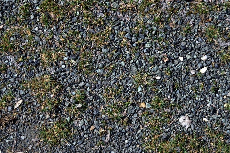 草向纹理扔石头 图库摄影
