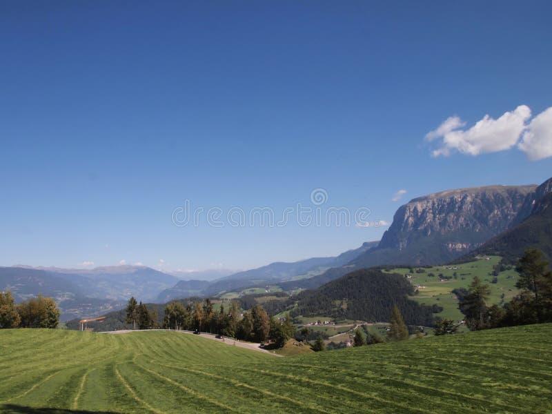 草和山在白云岩 免版税库存图片