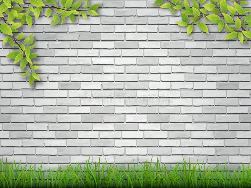 草和树枝在白色砖墙上 皇族释放例证