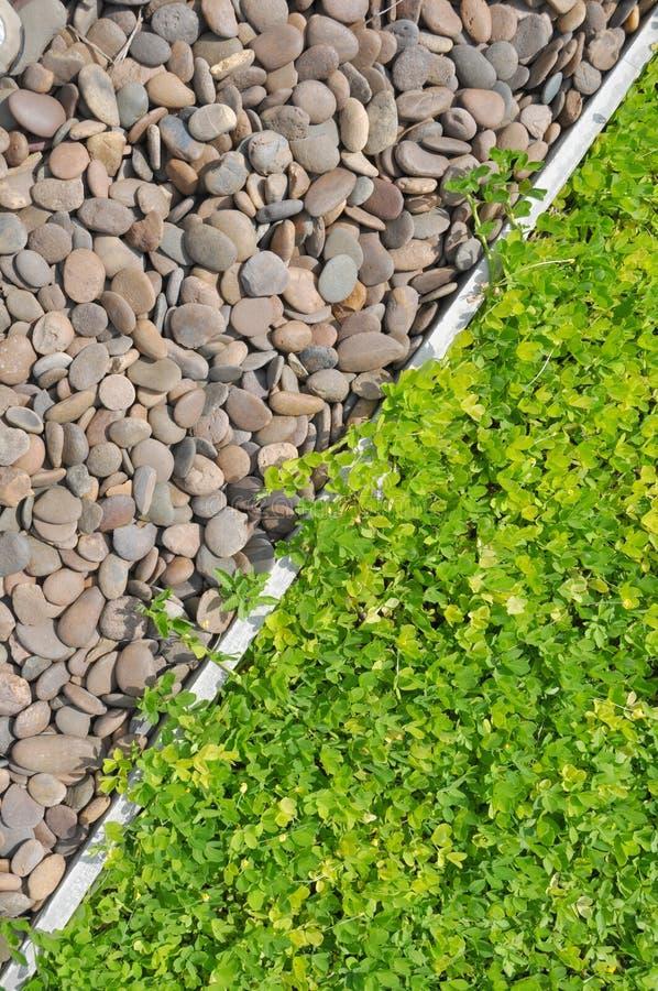 草和石头背景  库存图片