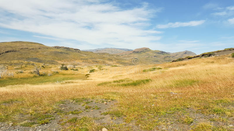 草地和山在托里斯del潘恩国家公园 免版税图库摄影