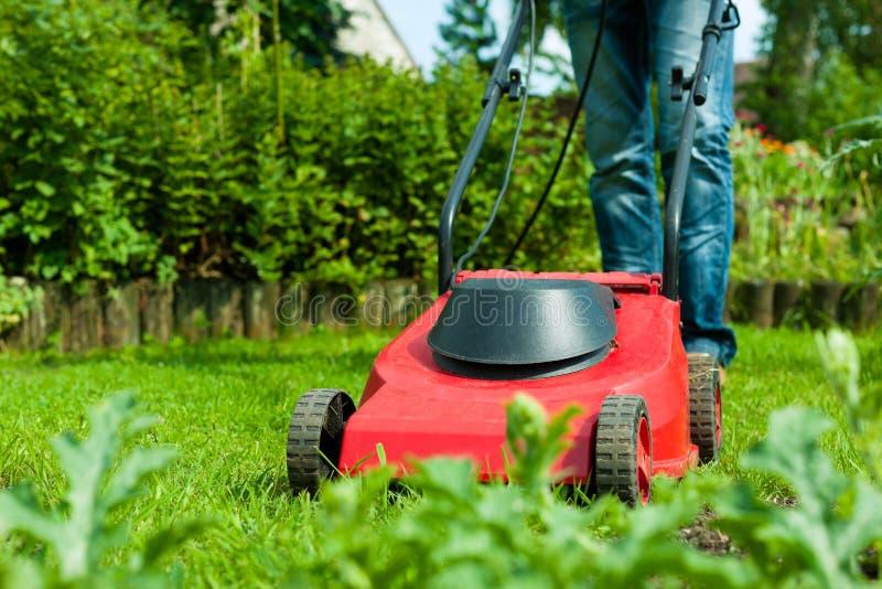 草坪人割的夏天 图库摄影