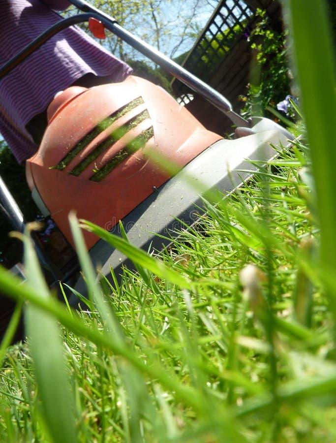 草坪割 免版税库存图片