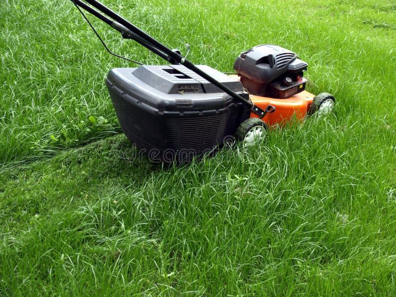 草坪割 库存照片