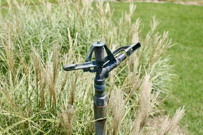 草坪喷水隆头和灌溉系统 免版税库存图片