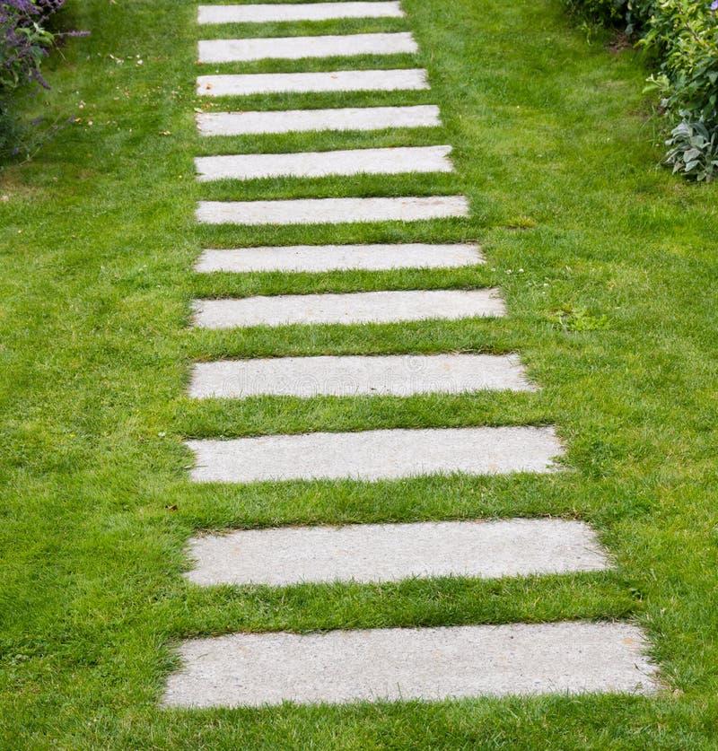 草坪摊铺机石头 库存图片