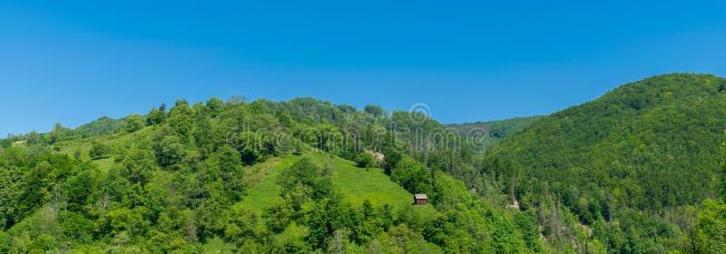 草坪的棚子在森林里 图库摄影
