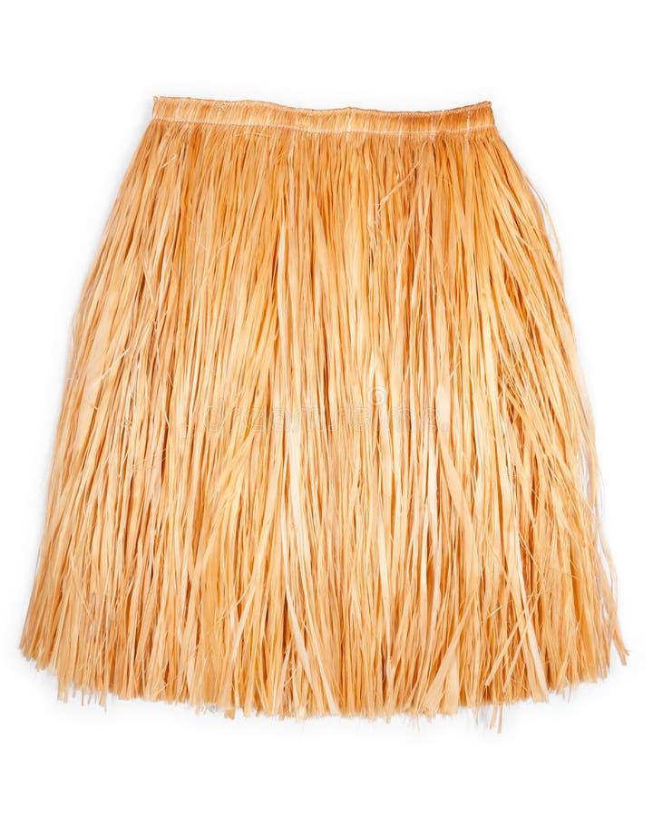 草夏威夷裙子 免版税库存图片