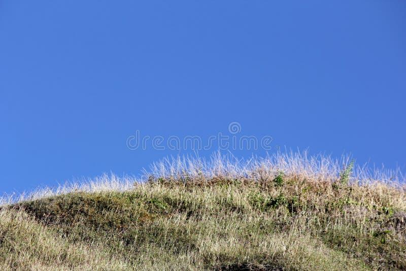 草山有蓝天背景 免版税库存图片