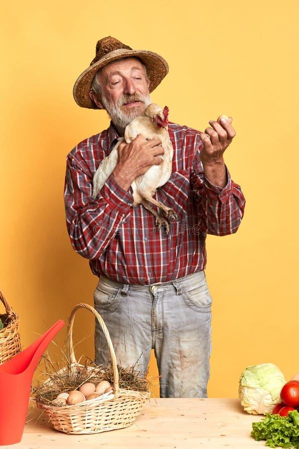 草帽藏品鸡的老村庄人和观看在新近地下的鸡蛋 免版税库存图片