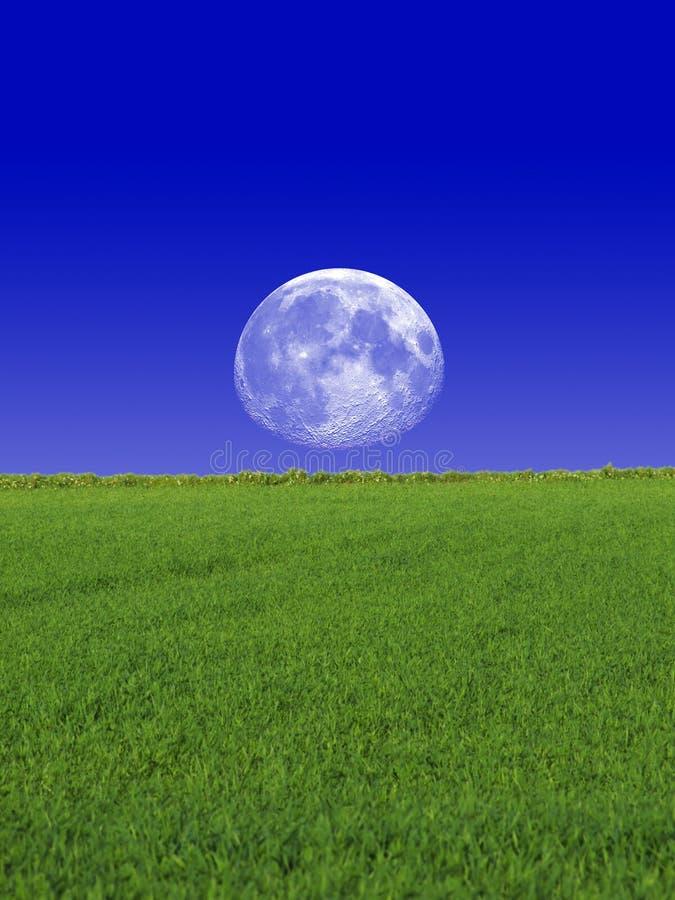 草月亮天空 图库摄影