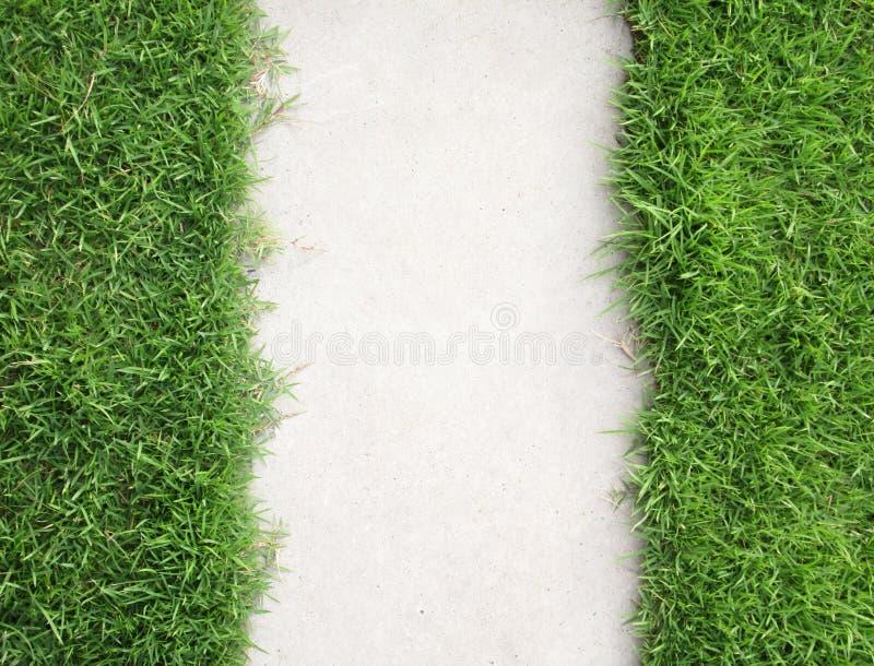 草有走道背景 库存照片