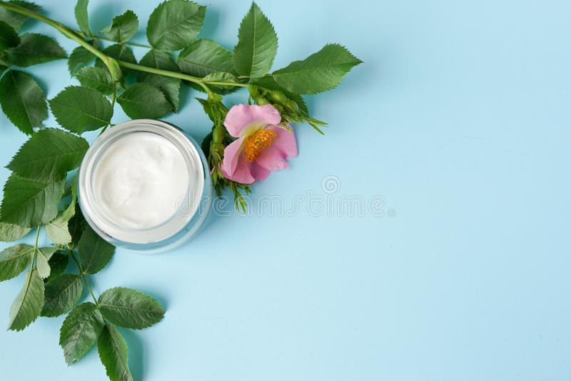 草本化妆卫生奶油,与桃红色花 在玻璃瓶子的skincare产品在蓝色背景拷贝空间 免版税图库摄影