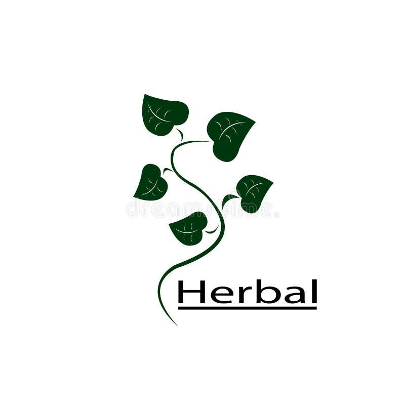 草本商标药用植物 向量例证