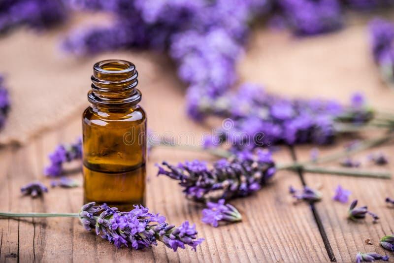 草本油和淡紫色花 免版税库存图片