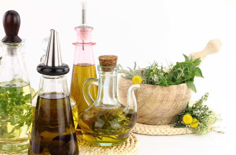 草本油橄榄 免版税库存图片