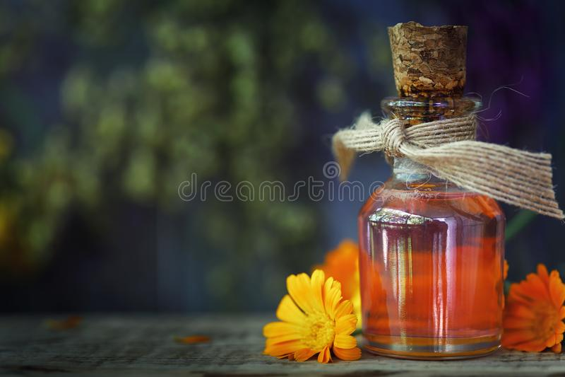 草本治疗:从金盏草花的医药酊  免版税库存照片