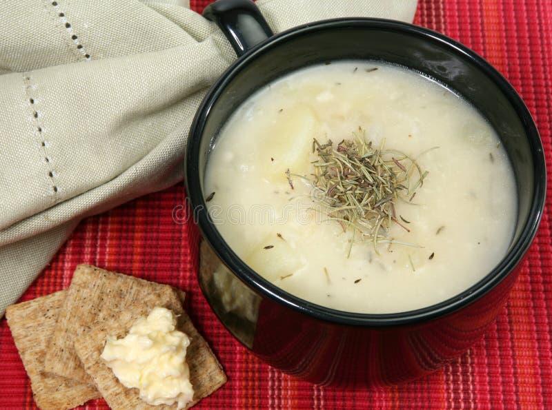 草本温暖的土豆汤 免版税库存图片
