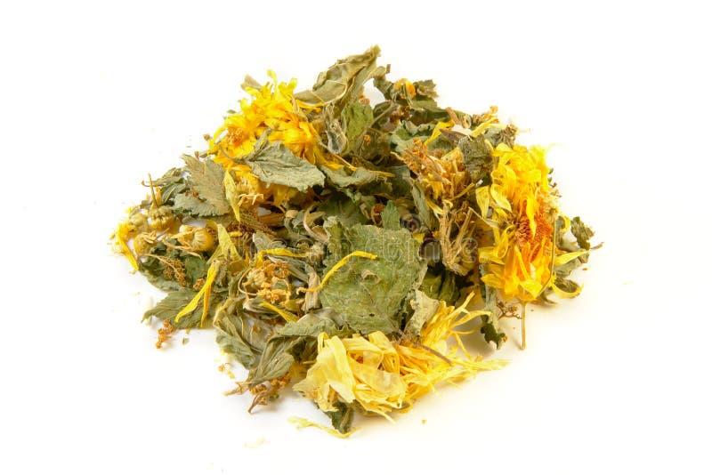 草本胃支持茶,隔绝在白色背景 库存照片