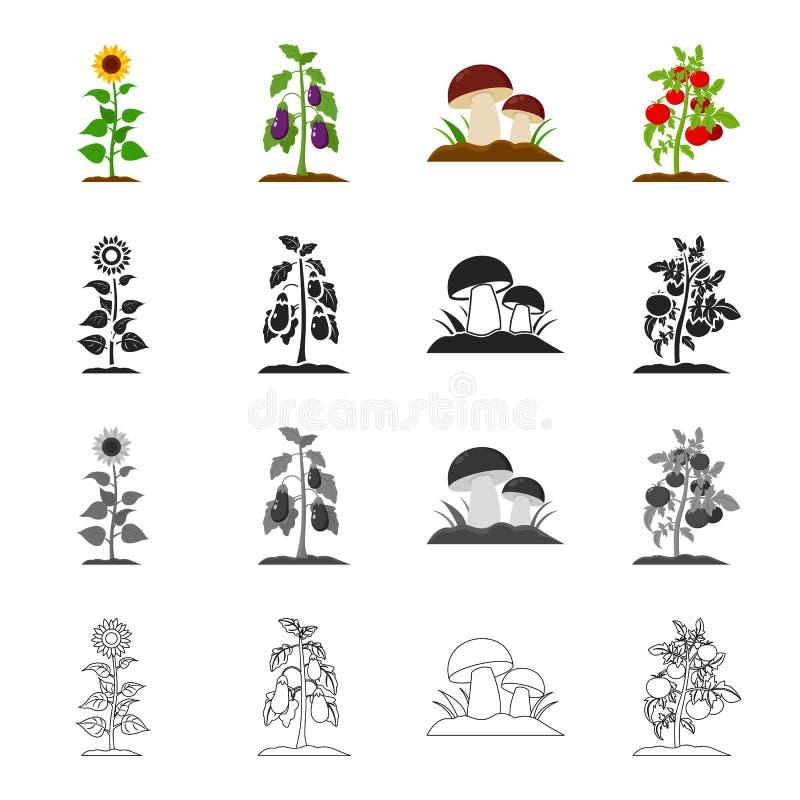 草甸、森林、剧情和其他网象在动画片样式 莓,果子,在集合汇集的菜象 库存例证
