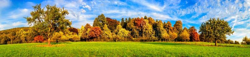 草甸和五颜六色的树在秋天 免版税库存照片