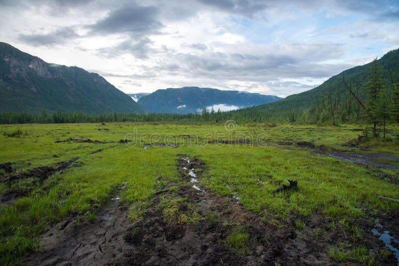 草甸和山在多云天气 区东部ilchir找出okinsky高原sayan的俄国 布里亚特共和国 库存照片