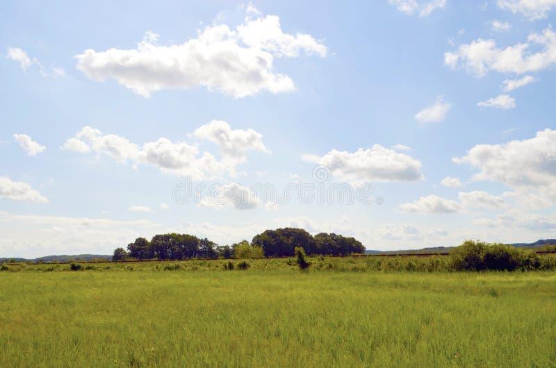 草甸和树在波罗的海海岛乌瑟多姆岛在蓝天下与白色云彩和一个铁路堤防上在ho 库存图片