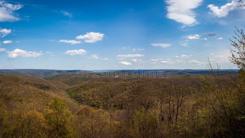 草甸山俯视,野蛮河状态森林,马里兰 库存照片