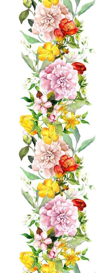 草甸开花,野草和叶子 重复夏天边界 花卉水彩 皇族释放例证